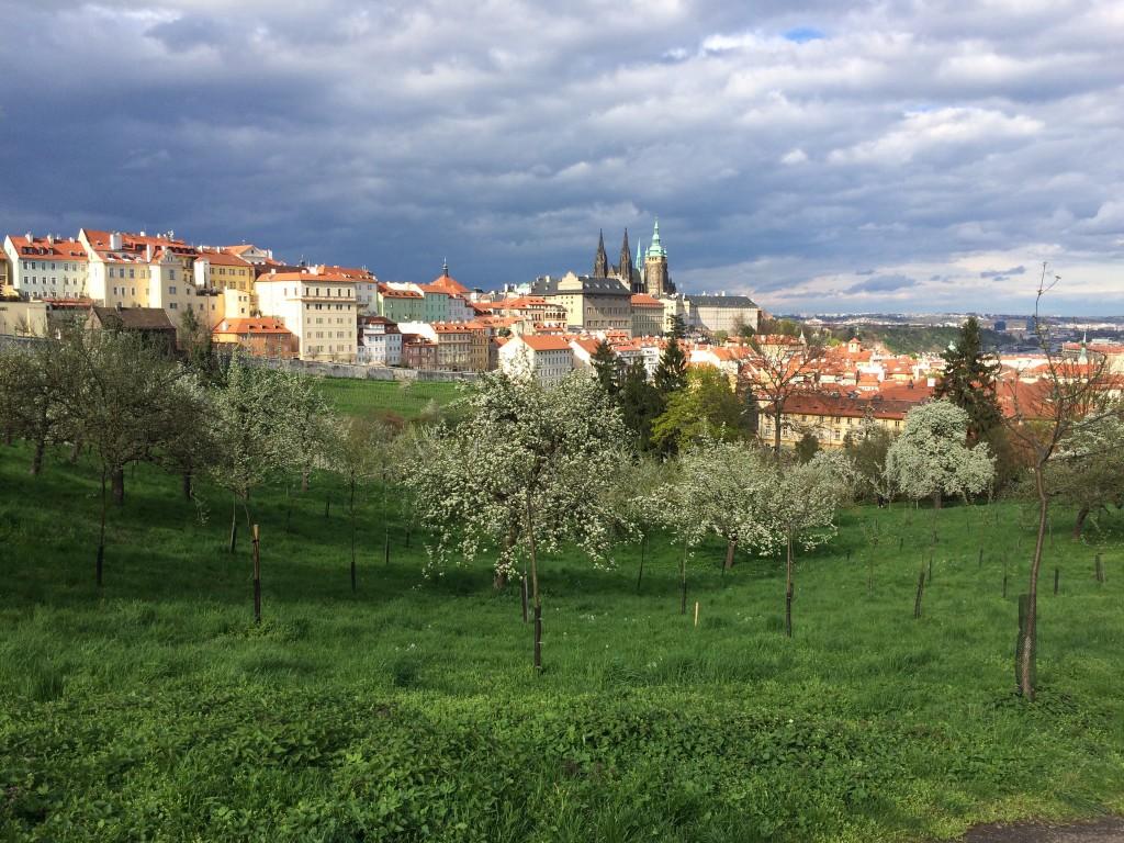 Foto-point zum Prager Burg